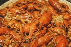 煮沸的小龙虾用香料 免版税图库摄影