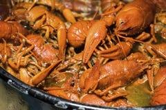 煮沸的小龙虾用香料 免版税库存照片