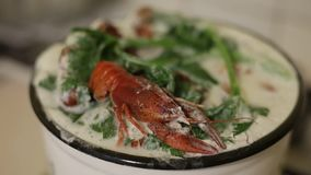 煮沸的小龙虾的准备在一个平底锅的用牛奶和芹菜 Ð ¡ ooked在平底深锅的红色小龙虾 特写镜头 股票录像