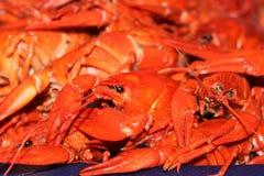 煮沸的小龙虾的大部分在盘子特写镜头的 免版税库存照片