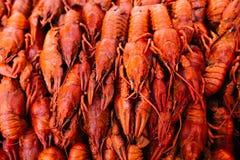煮沸的小龙虾红色 免版税库存照片