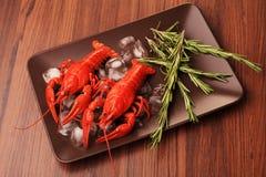 煮沸的小龙虾 库存图片