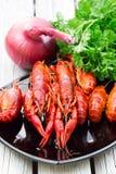 煮沸的小龙虾 woden背景 土气样式 红色煮沸了在黑长方形板材的小龙虾 免版税图库摄影