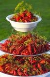 煮沸的或被蒸的小龙虾 库存照片