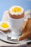 煮沸的杯子鸡蛋 免版税库存图片