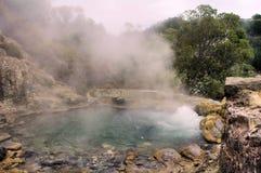 煮沸的湖水 库存照片