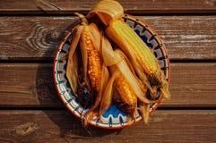 煮沸的玉米棒玉米 免版税库存图片