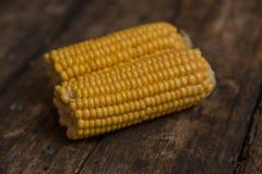 煮沸的玉米棒玉米 库存图片