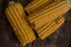 煮沸的玉米棒玉米 免版税库存照片