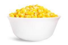 煮沸的玉米种子 免版税库存照片