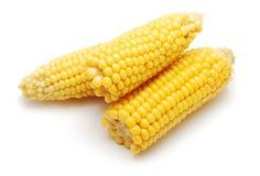 煮沸的玉米 免版税库存图片