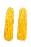 煮沸的玉米 免版税库存照片