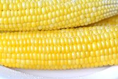 煮沸的玉米 库存照片