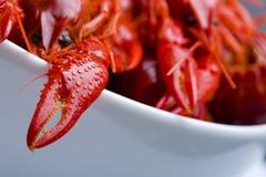 煮沸的碗小龙虾白色 免版税库存图片