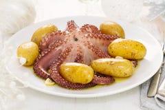 煮沸的章鱼用在白色盘的土豆 库存图片