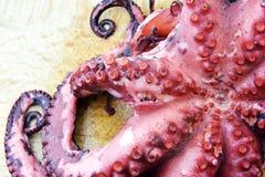 煮沸的章鱼 库存照片
