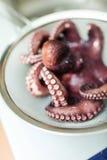 煮沸的章鱼 库存图片