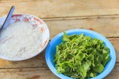 煮沸的米猪肉和绿色香菜 图库摄影