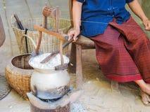 煮沸的茧桑蚕 免版税库存图片