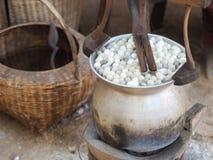 煮沸的茧桑蚕 免版税图库摄影