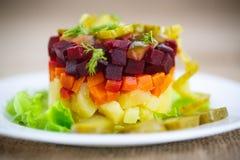 煮沸的菜沙拉用甜菜根 免版税库存照片