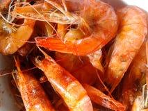 煮沸的虾 免版税库存图片