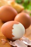 煮沸的蛋坚硬 免版税库存照片