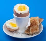 煮沸的蛋装煮好带壳蛋之小杯 免版税库存照片