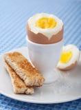 煮沸的蛋装煮好带壳蛋之小杯 库存图片