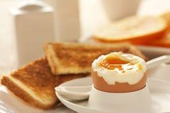 煮沸的蛋软件 图库摄影
