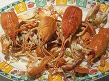 煮沸的螃蟹盘 库存照片