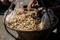 煮沸的豆的小贩 免版税库存图片