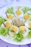 煮沸的鸡蛋用沙拉、新芽、黄瓜和radi 免版税库存图片