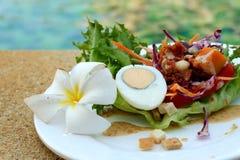 煮沸的鸡蛋用沙拉开胃菜 图库摄影
