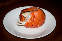 煮沸的龙虾仁 免版税库存图片