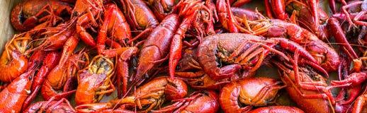 煮沸的Cajun小龙虾准备好消耗量 库存照片