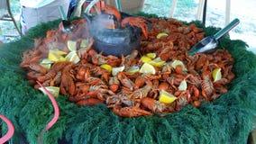 煮沸的crawfishes 免版税库存图片