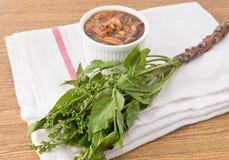 煮沸的Neem泰国食物用甜调味汁 免版税库存照片