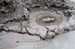 煮沸geotermal疯狂的活动 库存图片