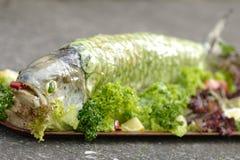 煮熟的三文鱼 库存照片