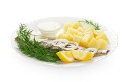 煮熟的土豆用鲱鱼和调味汁 库存图片