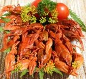 煮熟的小龙虾 免版税库存图片