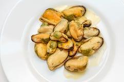 煮熟的淡菜 免版税库存图片