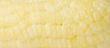 煮熟的玉米 免版税图库摄影