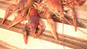 煮熟的红色小龙虾 股票录像