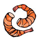 煮熟的虾或大虾鸡尾酒 隔绝在一个白色背景乱画动画片葡萄酒手拉的剪影 免版税图库摄影