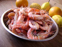煮熟的虾 库存图片