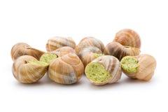 煮熟的蜗牛纤巧 法国烹调被充塞的蜗牛 库存图片