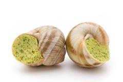煮熟的蜗牛纤巧 法国烹调被充塞的蜗牛 库存照片