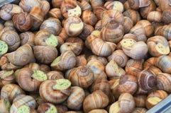 煮熟的蜗牛纤巧 免版税库存照片